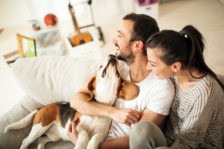 4 Tampa Apartment Must-Haves