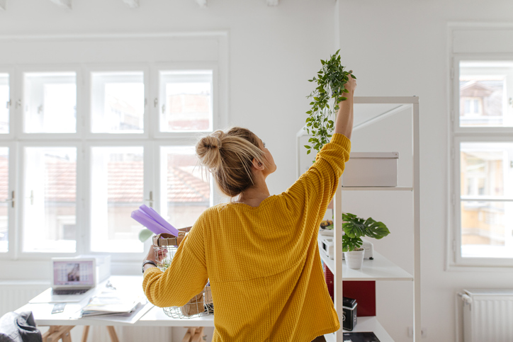 8 Steps To Improve Your Apartment